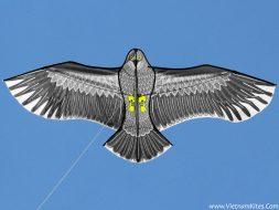 Diều chim đại bàng