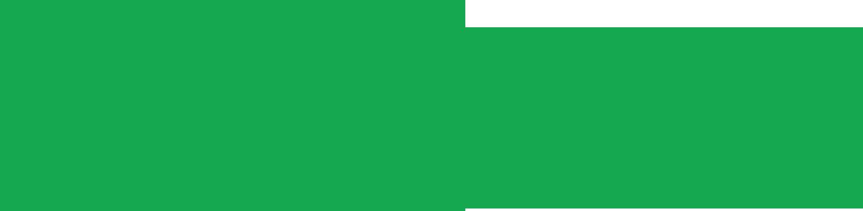 Vietnam Kites